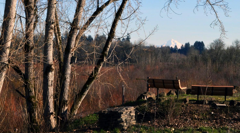 15-mt-hood-views-hillsboro-oregon-the-kelly-group-real-estate