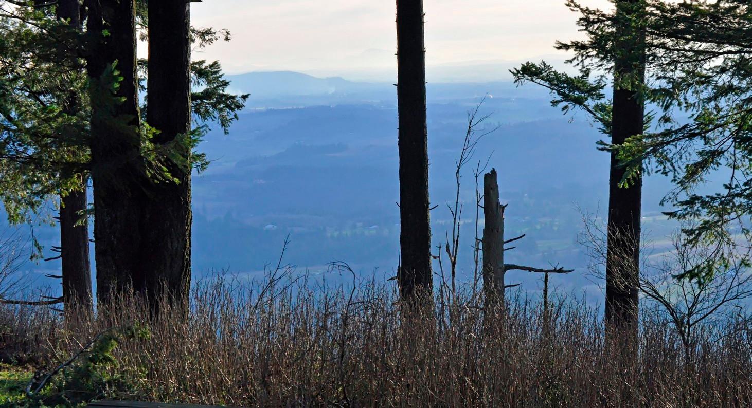 16-mountain-view-bald-peak-park-hillsboro-oregon-the-kelly-group-real-estate